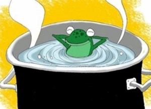boiling_stupid_frog3